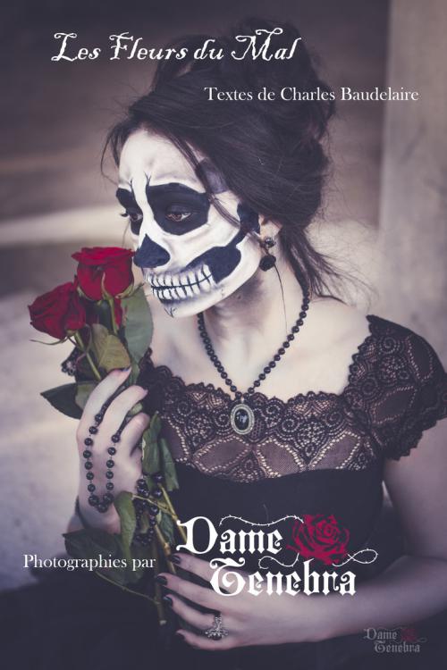 Baudelaire_project_by_dametenebra-dc11riv